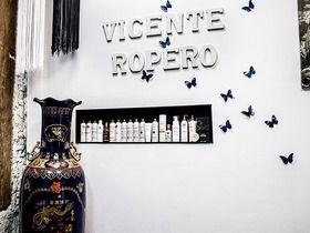 Vicente Ropero
