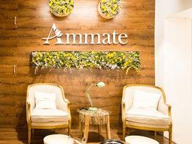 Ammate