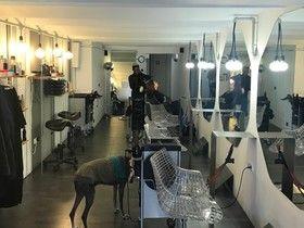Salon 223