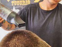 Tugurio Barber Shop - 3